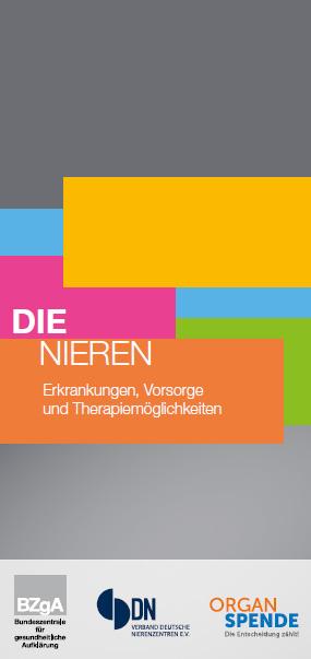 Bild zu Die Nieren - Erkrankungen, Vorsorge und Therapiemöglichkeiten