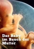 Titelseite des Faltblattes: Das Baby im Bauch der Mutter